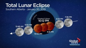 Total lunar eclipse, 'super blood wolf moon' a treat for southern Alberta skygazers